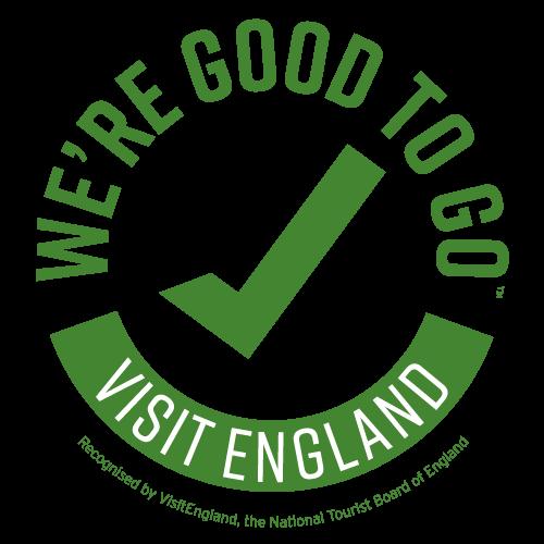 Good to go England logo green